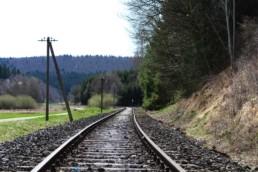 Bahngleise am Waldrand