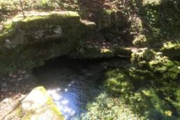 Fluß Lauter Quelle