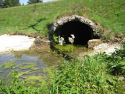 Steiniger Brunnen in Steingebronn